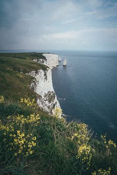 Jurassic Coast, Verenigd Koninkrijk van Tom in 't Veld