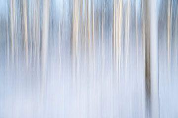 Een abstract landschap in de sneeuw - 13 van Danny Budts