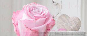 Pink Love van