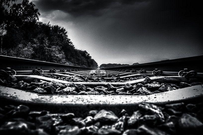 On the Track (zwart / wit) van Michiel ter Elst