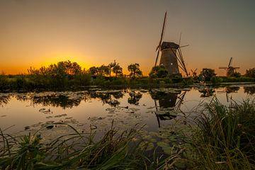 Gouden Kinderdijk von Marc Smits