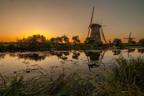 Gouden Kinderdijk