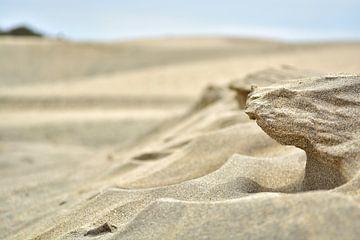 Skulpturen aus Sand I van Mathias Kuhn