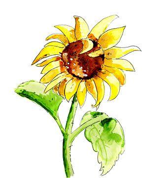 Illustration der Sonnenblume von Ivonne Wierink