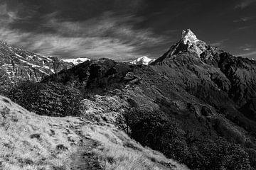 Looproute van de Mardi Himal trekking in Nepal. van
