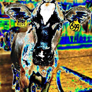 Kleurige koe van Ina Hölzel