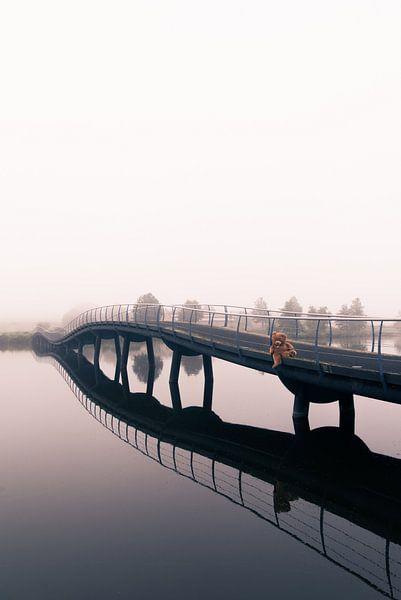 Alone in the mist #1 van Vincent van Dam