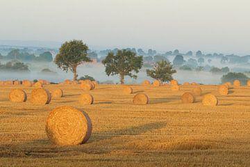 Frans landschap - hooitijd van jordan blaauw