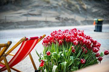 Strand tulpen van Okko Meijer