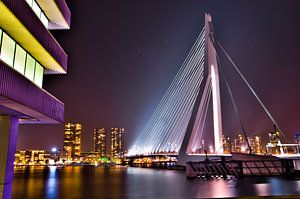Erasmusbrug zuidkant van Rotterdam RawBird Photo's Wouter Putter