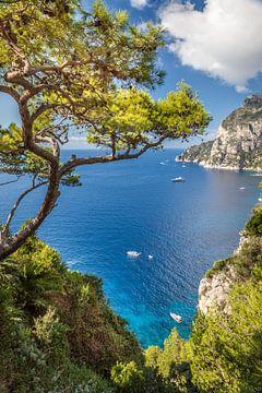 Uitzicht op Punta de Masullo op Capri van Christian Müringer