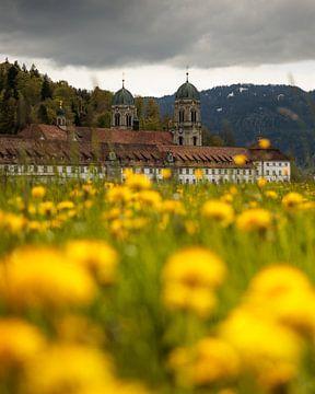 Lente in het klooster van Einsiedeln - Hoog van Pascal Sigrist - Landscape Photography