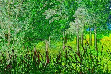 Forestry Landscape van De Rover