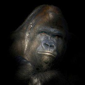 Portret van een zilver rug Gorilla van Karin aan de muur