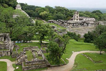 Palenque van Antwan Janssen