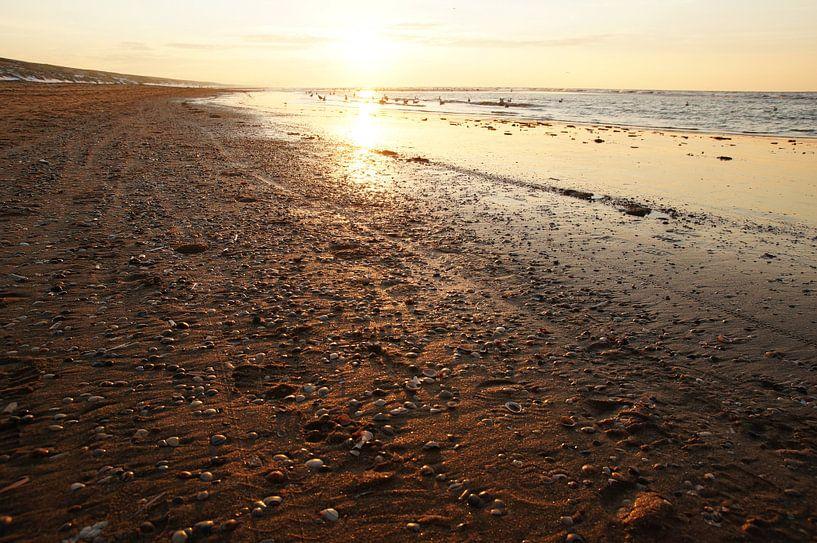 strand bij zonsondergang van Dirk van Egmond