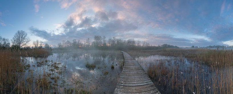 Panorama Beekbergerwoud van Jan Koppelaar