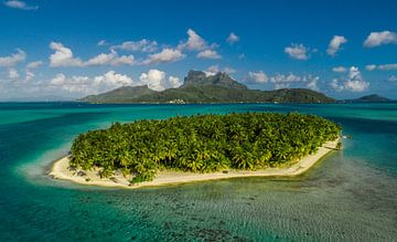 Motu Bora Bora van