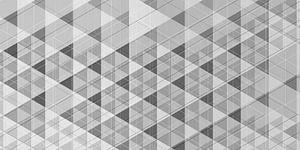 Geometrisch 01 zwartwit van Ramon Schellevis