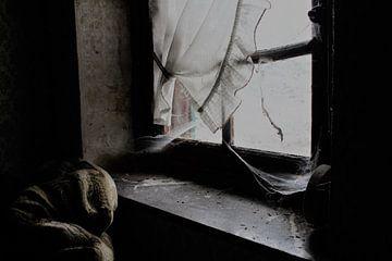 Window von Esmeralda Van de Pol