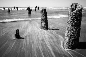 Neskowin Beach Oregon van Charlotte Bakker