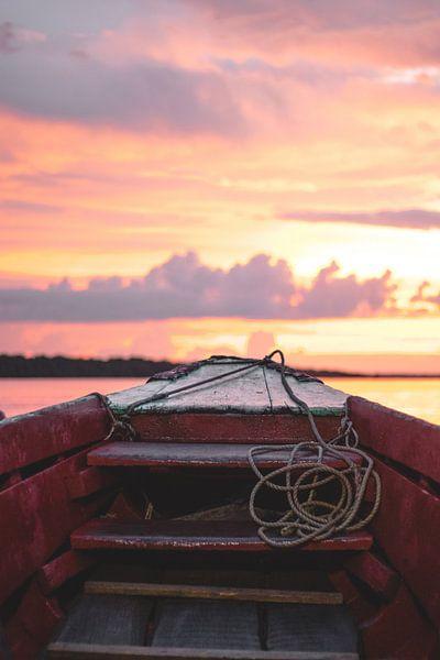 Surinam River at Sunset van Antoine Cedric