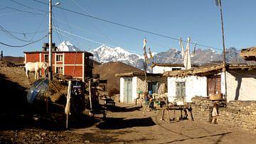 'Muktinath', Annapurna gebergte- Nepal van