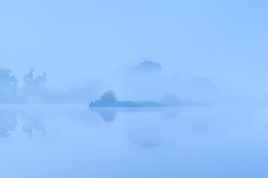 Foggy silhouettes