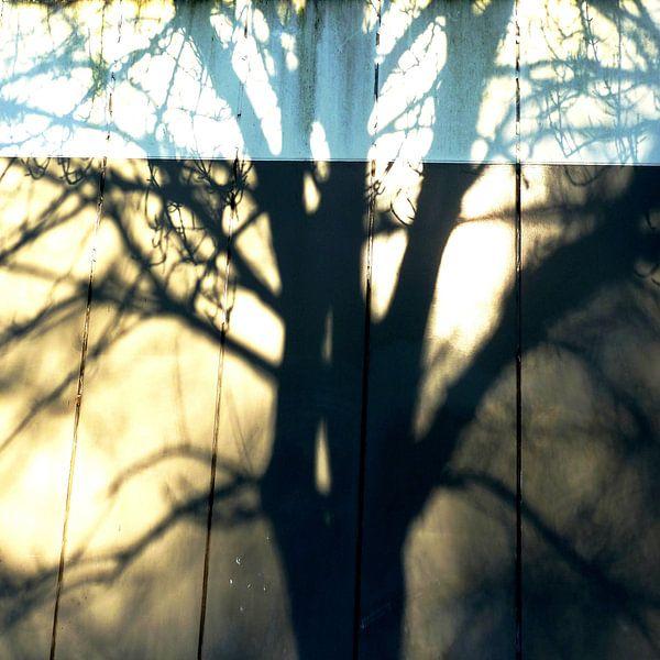 Tree Magic 12 van MoArt (Maurice Heuts)