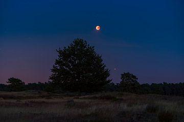 Maansverduistering en Mars boven de Veluwe van