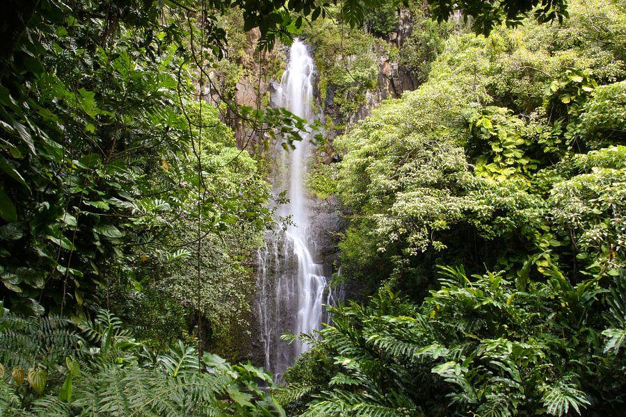 Waimoku waterval