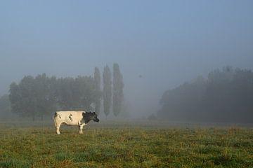 Het platteland, grazende koe van Els Royackers