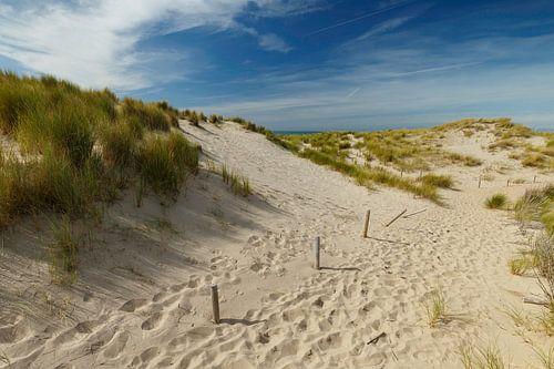 Nederlandse duinen van