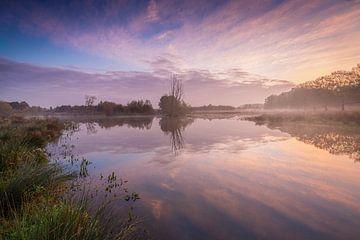 Hollands Polderlandschap tijdens een mistige zonsopkomst van Original Mostert Photography