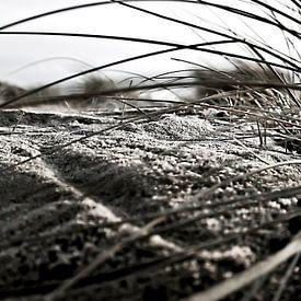 Op de duinen van Norbert Sülzner
