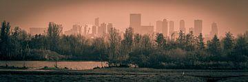 Skyline Rotterdam van Marco de Graaff