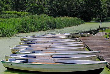 Bateaux à rames à Vriezeveen sur W. Hovinga