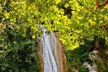 Kalamari Waterval van Inge Wiedijk