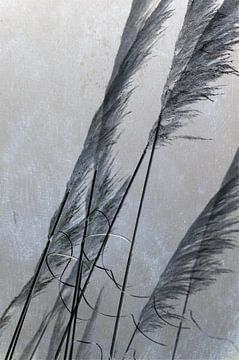 Herbe de la Pampa van Martine Affre Eisenlohr