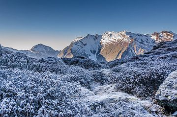 Eiskalter Morgen im Himalaja (Makalu) von Bep van Pelt- Verkuil