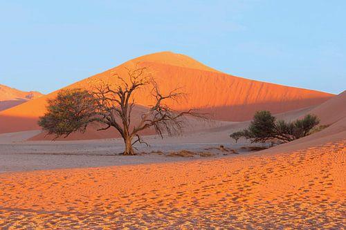Kleurenspel woestijnlandschap, Namibië  van