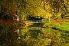 Herfst op Landgoed Elswout van Michel van Kooten thumbnail