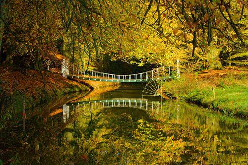 Herfst op Landgoed Elswout von Michel van Kooten