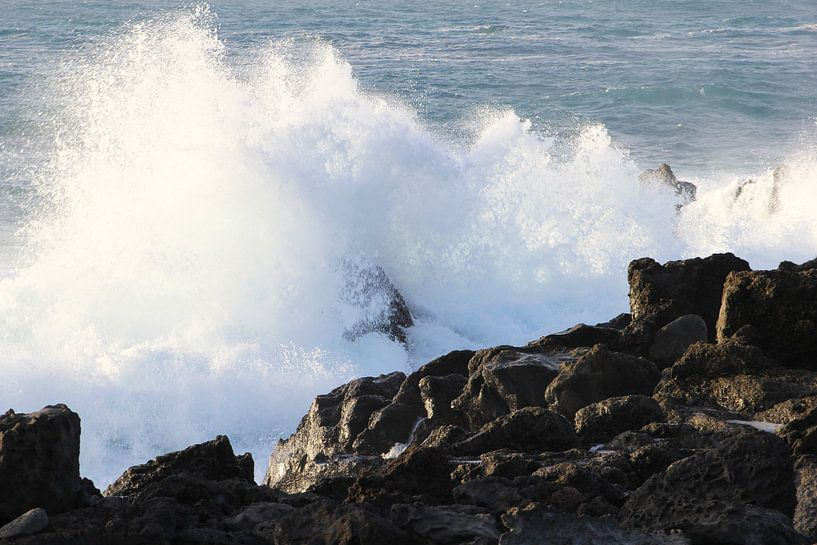 Woeste golven oceaan van Inge Hogenbijl