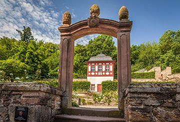 Rosengarten im Zisterzienserkloster Eberach bei Kiedrich van Christian Müringer