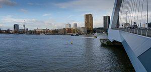 Skyline Rotterdam met Erasmusbrug