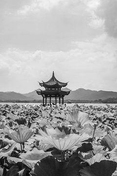 Hanghzhou von Celine Dhont