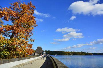 Staumauer im Herbst van