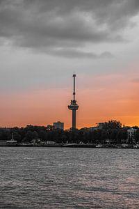 Rotterdam Skyline (zonsondergang)
