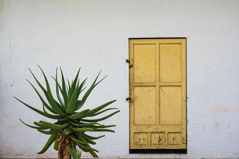 deur van Peter v Mierlo